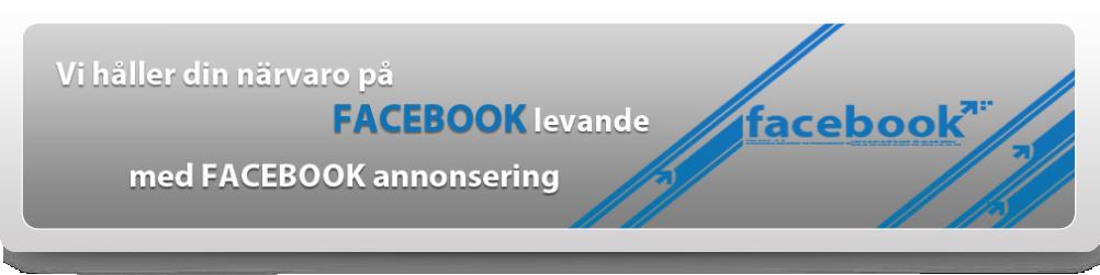 social marknadsföring facebook
